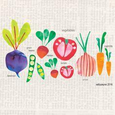Vegetables illustrations   Sally Payne