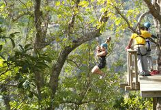 Want to do this! Zip-wiring in St Lucia - Top 10 things to do in St Lucia Southern Caribbean, Caribbean Cruise, Santa Lucia, 28th Birthday, Birthday Wishes, Dream Vacations, Vacation Spots, St Lucia Weddings, Famous Twins