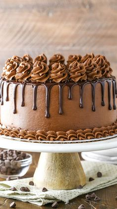 A decadent and moist Chocolate Cake recipe with the easiest whipped Chocolate Frosting. Homemade chocolate cake makes for a stunning birthday cake. Easy Moist Chocolate Cake, Chocolate Hazelnut Cake, Best Chocolate Cake, Homemade Chocolate, Chocolate Recipes, Chocolate Frosting, Oreo Cake Recipes, Homemade Cake Recipes, Frosting Recipes