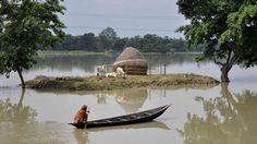 MONZÓN. Las fuertes lluvias se ha cobrado al menos 24 vidas en la India. Si bien las lluvias anuales de la India son un salvavidas para el sector agrícola del país, las inundaciones, los deslizamientos de tierra y derrumbes de edificios son frecuentes durante la temporada del monzón, que barre la India de junio a setiembre. Cientos de personas mueren cada año en la temporada de monzones en el sur de Asia. (AFP).