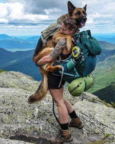 Meet Bear: The mountain-climbing, desert-hiking adventure dog of Nicole Handel Mountain Climbing, Rock Climbing, Camping And Hiking, Camping Dogs, Beach Camping, Camping Survival, Outdoor Survival, The Great Outdoors, Animal Crossing