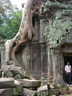 AngkorWatManTreeTemple - Cambodja  (trees are growing around and into the temple)