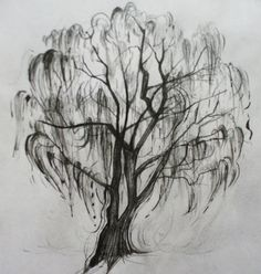 Weeping Willow Tattoo.... In color would be awesome!