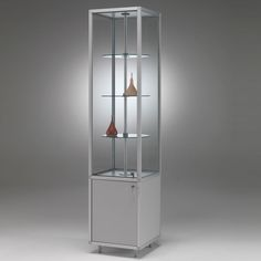 Awesome Trophy Cabinets for Schools