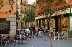 A leafy street - Madrid photo
