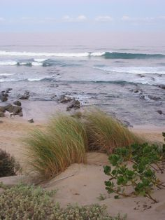 Shelley Beach In Port Alfred Harcourtsportalfred Beach Images Hd, Marina Home, Beach Wallpaper, Pink Sky, Beach Photography, Beautiful Beaches, Summer Beach, Sea Shells, South Africa