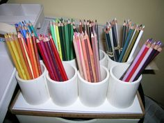 The plan for my color pencils this year!  I will figure this out before the end of my career I swear!  =-)