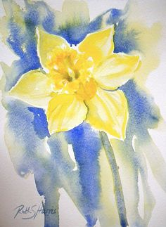 One bunch of daffodils can provide inspiration for many sketches! First, the whole bunch. Birthday Daffodils - © Ruth S Harris 2013 . Watercolor Paintings For Beginners, Watercolor Pictures, Watercolor Projects, Watercolor Disney, Watercolor Cards, Abstract Watercolor, Watercolour Painting, Watercolours, Acrylic Painting Flowers