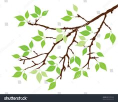 stock-vector-vector-tree-branch-with-green-leaves