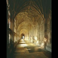 Gloucester Cathedral. Stunningly beautiful gothic architecture.