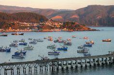 Bahía de Lota. Foto de Michael Pereira P.