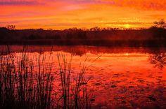 Sunrise at Half-Day FP