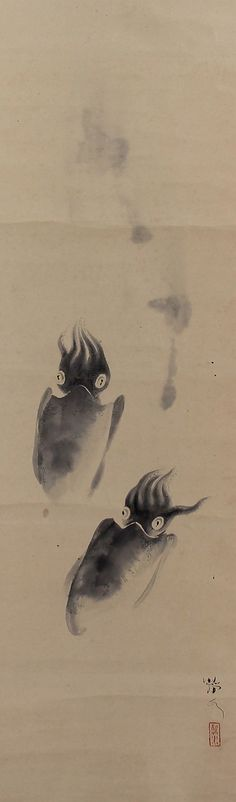 Cuttlefish, Hashimoto Seisui (-1943), Japanese hanging scroll painting. Japanese Art Prints, Japanese Art Styles, Chinese Painting, Chinese Art, Watercolor Fish, Japan Painting, Korean Art, Zen Art, Japan Art