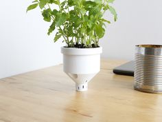 Campbell Planter - Fully 3D Printed Self-Watering Planter- Thingiverse