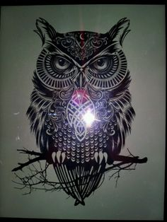Owl tattoo ..