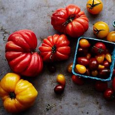 Cours GRATUIT pour chefs juniors ce samedi le 1ier août à 10h chez Williams-Sonoma Quartier Dix30!Les tomates sont mûres et prêtes pour manger! Rejoignez-nous et apprendre à faire des plats délicieux qui ne manqueront pas d'impressionner votre famille. Vous apprendrez également quelques faits amusants sur les tomates. Reservations requises. 450-445-9443 FREE junior chef cooking class this Saturday August 1st at 10am at your local William-Sonoma  Quartier Dix30 store. Tomatoes are ripe and…