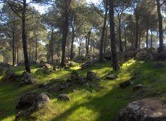 Baños de la Encina: alojamiento + sendero guiado ( #Jaén)