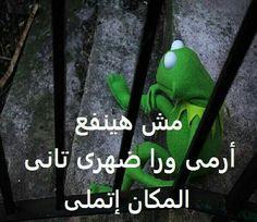 Arabic Jokes, Arabic Funny, Funny Arabic Quotes, Crazy Funny Memes, Wtf Funny, Funny Jokes, Mystic Messenger Characters, Emoji Images, Kermit The Frog