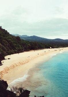 Maui Diary.