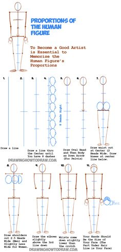 Learn How to Draw Human Figures in Correct Proportions by Memorizing Stick Figures : Drawing People Tutorial