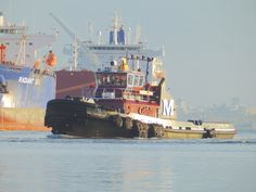 international container ship