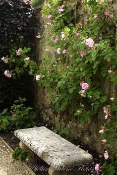 Mad About-Garden-Design- Romantic garden with pink climbing roses Love Garden, Garden Pool, Dream Garden, Garden Bridge, Garden Cottage, Rose Cottage, Rosa Rose, Garden Seating, Garden Benches