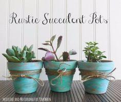 Succulents Crafts and DIY Projects - DIY Rustic Succulent Pots - How To Make Fun, Beautiful and Cool Succulent Cactus Wedding Favors, Centerpieces, Mason Jar Ideas, Flower Pots and Decor http://diyjoy.com/diy-ideas-succulents-crafts