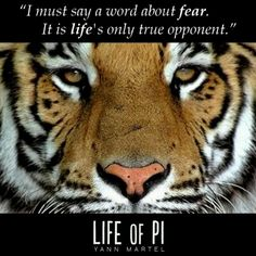 Completely under-hyped! I will never forget this film, and see it in (Original pin : Life of Pi - Please see this movie in - a beautiful, spellbinding tale - it has changed the way I think about so many things.