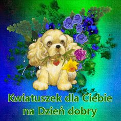 Beautiful Dogs, Birthday Wishes, Good Morning, Teddy Bear, Poster, Pictures, Artworks, Picture Polish, Good Evening Greetings