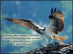 """""""Heroes take journeys, confront dragons, and discover the treasure of their true selves. Hero's Journey, Wise Women, Change Quotes, Archetypes, Words Of Encouragement, Writing A Book, Live For Yourself, Life Is Good, Inspirational Quotes"""