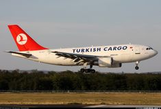 Airbus A310-304(F) aircraft picture