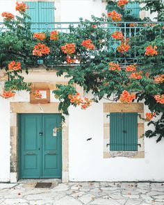 orange blossoms with blue shutters and doors by @corinanika