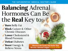 Balancing Adrenal Hormones Can Be the Real Key: Discover the foods and herbs that reverse adrenal fatigue! Adrenal Fatigue Treatment, Adrenal Fatigue Symptoms, Chronic Fatigue Syndrome, Thyroid Disease Symptoms, Thyroid Diet, Addison's Disease, Hypothyroidism, Adrenal Health, Adrenal Diet