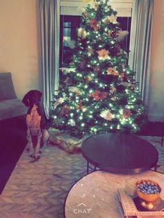 Herringbone Rug, Christmas Tree, Rugs, Holiday Decor, Home Decor, Teal Christmas Tree, Farmhouse Rugs, Decoration Home, Room Decor
