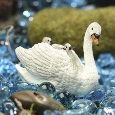 Miniature White Swan with Cygnets