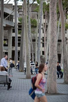 PAM - Verhard plein met bomen - Macquarie University Central Courtyard - Hassell #landscapearchitecturecourtyard