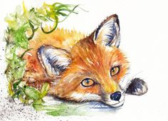 Original Watercolour Painting by Be Coventry,Animals,Realism,Fox
