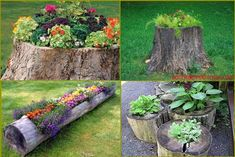 I have several tree roots that came out of the garden, now this is an idea worth doing with them.