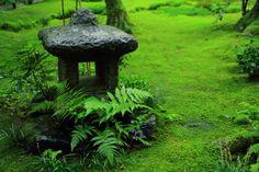 奥嵯峨の苔庭の燈籠