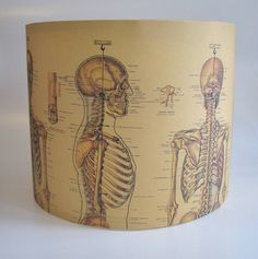 Handmade Vintage Skeleton Lampshade by Rosie's Vintage Lampshades, the perfect gift for Explore more unique gifts in our curated marketplace. Photomontage, Cool Things To Make, Old Things, Vintage Lampshades, Lampshade Designs, Paper Lampshade, Steampunk House, Gadgets, Old Lamps
