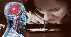 Wild feuernde Neuronen im Kopf: Das ist eine Folge der Droge Kokain. Sie produzieren das Glückshormon Dopamin und verändern die Funktion der Nervenzellen. FOCUS Online erklärt, welche Mechanismen sich im Gehirn abspielen.
