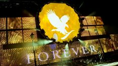 Angol reggeli lengyel felszolgálással Magyarnak lenni Wembley-ben Rájártunk a fenevadra #gabokakucko