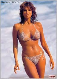 Image result for raquel welch playboy