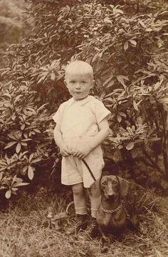Vintage dachshund