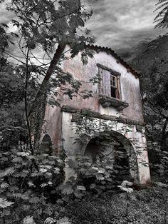 Colares - perto de Sintra