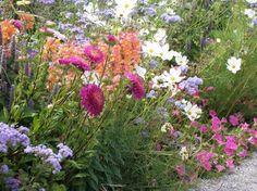 Simple Bauerngarten Anlegen Gestalten und Bepflanzen Cottage GardensBuntGardeningGarden