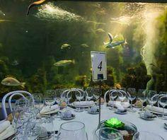 Sala   Restaurante Aquarium Finisterrae en A Coruña