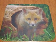 Dozens of designs in stock and ready to ship!  FREE shipping!  Fox Mouse Pad - Young Fox in a Log