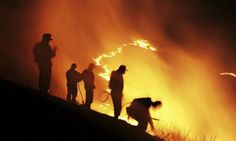 17 Best Volunteer Firefighter Quotes firefighter dalmation, dalmation and firefighter halloween, firefighter baby room Wildland Firefighter, Firefighter Mom, Volunteer Firefighter, Firefighters, Firemen, Firefighter Halloween, Firefighter Images, Firefighter Quotes, Fire Dept