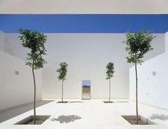Minimalist Garden and landscape Design Ideas | Founterior
